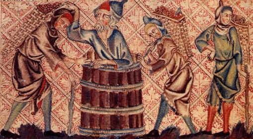 Noah vineyard (2)